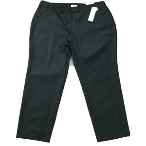 Charter Club Pants size 22W nwt Black